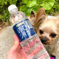 「飲むシリカ 口コミ アットコスメ」の画像検索結果