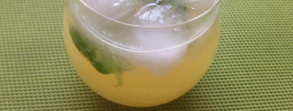 中医薬膳師が教える、イライラの原因「肝うつ」に効く簡単ソーダの作り方