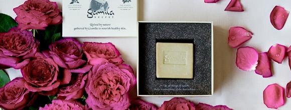 初夏に咲くローズの気品に満ちた香りガミラシークレットから限定の「ワイルドローズ」