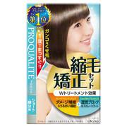縮毛矯正セット(ショートヘア・部分用) / プロカリテ