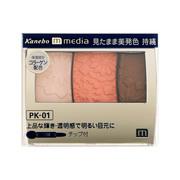 グラデカラーアイシャドウPK-01/メディア 商品写真