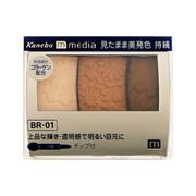 グラデカラーアイシャドウBR-01/メディア 商品写真