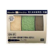 グラデカラーアイシャドウGN-01/メディア 商品写真