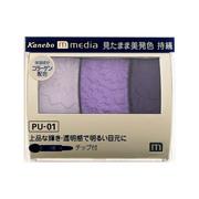 グラデカラーアイシャドウPU-01/メディア 商品写真