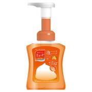 ミューズ泡ハンドソープ フルーティーフレッシュの香り本体 250ml/ミューズ 商品写真