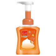 ミューズ泡ハンドソープ フルーティーフレッシュの香り/ミューズ 商品写真