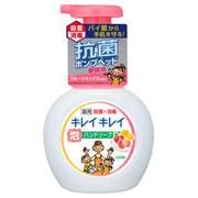 薬用泡ハンドソープ フルーツミックスの香り/キレイキレイ 商品写真 1枚目
