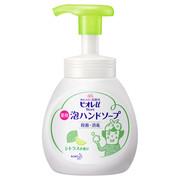 泡ハンドソープ シトラスの香り/ビオレu 商品写真 1枚目