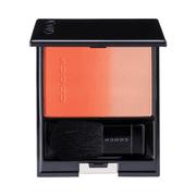 ピュア カラー ブラッシュEX-01 明橙-AKEDAIDAI/SUQQU(スック) 商品写真