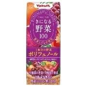 きになる野菜100 1食分の野菜 ポリフェノール/ヤクルト 商品写真