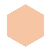 インテグレート グレイシィ ホワイトパクトEX 特製セットオークル10/グレイシィ 商品写真
