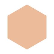 インテグレート グレイシィ ホワイトパクトEX 特製セットオークル20/グレイシィ 商品写真