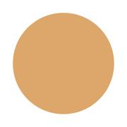 パウダリースキンメイカー04 やや濃いめの肌/ケイト 商品写真