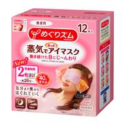 蒸気でホットアイマスク 無香料(旧)12枚入り/めぐりズム 商品写真