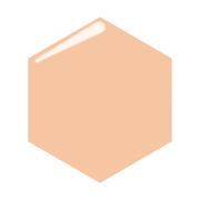プロフィニッシュリキッドオークル10/インテグレート 商品写真