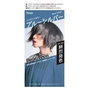 メイクアップカラーブルーシルバー/ビューティーン 商品写真