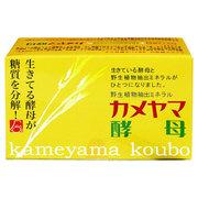 カメヤマ酵母/亀山堂 商品写真