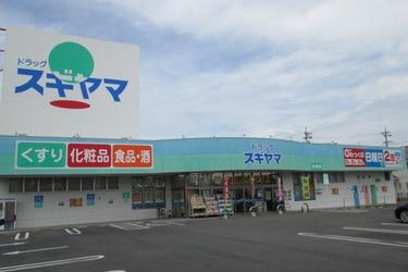 ドラッグスギヤマ 安城店