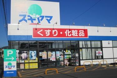 ドラッグスギヤマ 多米店