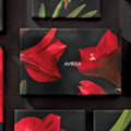 【本日発売!】 Aveda's Holiday Gift 2019