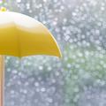 【インナービューティーコラム第5回】雨の日・屋内でも油断大敵?!梅雨から実践すべきUVケア