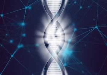 【オトナ女子必見】若々しい美肌を保つカギは『長寿遺伝子』にアリ?