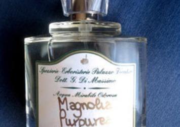 今、愛用の香水 と 終の香水
