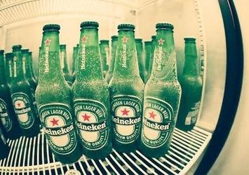 冷蔵庫で、冷やす。